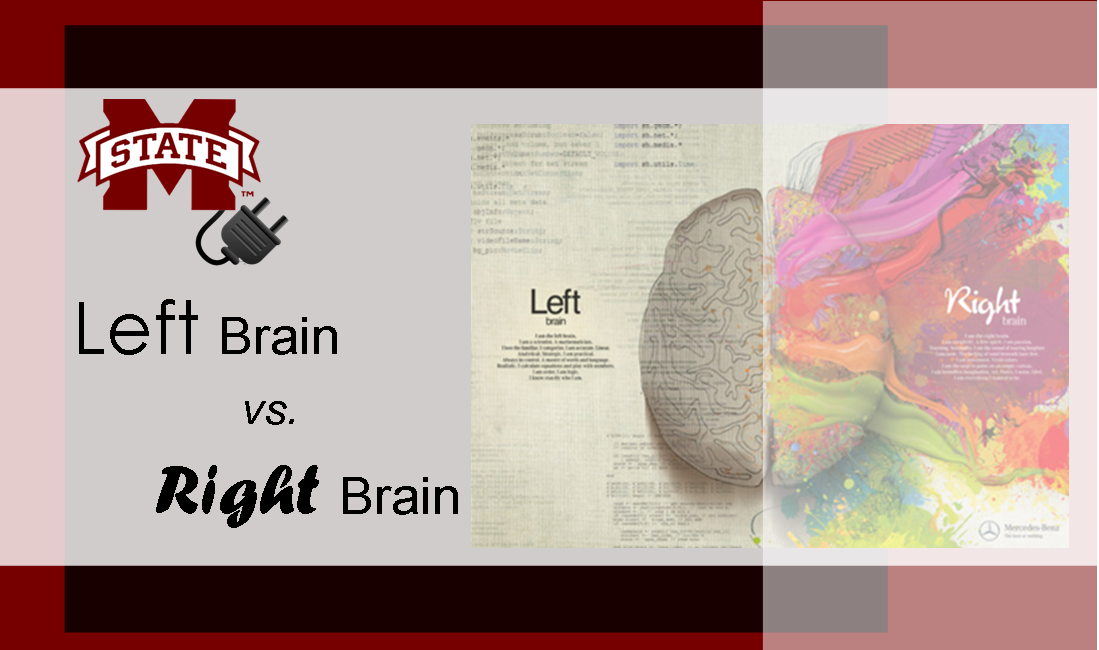 Left vs Right Brain